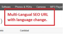 Multilingual SEO Frieldly URLs for All Pages