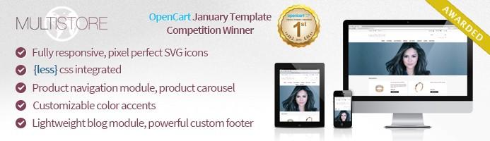MultiStore - January Contest Winner Responsive Template