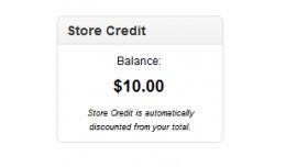 Show Store Credit Module