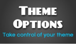 Theme Options - Change theme colours, background..