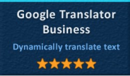 Google Translator Business