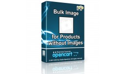 Bulk Image for Products without Images - Display..