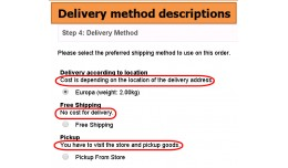 Shipping Delivery method descriptions in Checkout