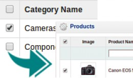 List Category Products [Admin area]