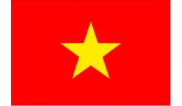 Vietnamese v2.0.X pack