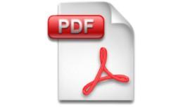 PDF invoice
