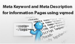 Add Meta Keyword and Meta Description on informa..