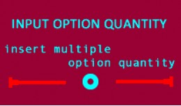 Option Input Quantity(1.5.x-2.3)