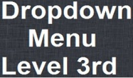 Dropdown Menu with level 3rd