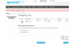 Not Enough Balance Message in Cart Page  v0.1