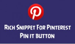 Pinterest Rich Pins Snippet - Pin It button