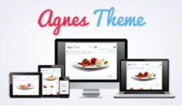 Agnes Theme