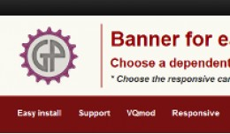 Banner for category