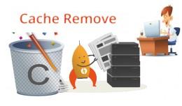 cache remove