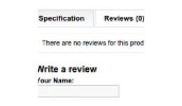 Remove product description tab