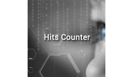 Hits Counter