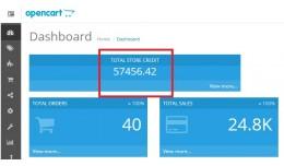 Admin Total Store Credit