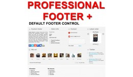 Professional Footer