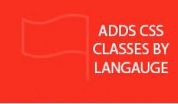 Add Language Class