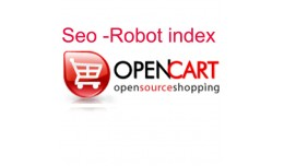 Seo Robot index for product