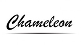 Chameleon - Premium Responsive Theme