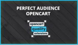 Perfect Audience - Retargeting, Conversions &amp..