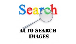 Auto Search Images for Categories