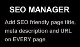 SEO Manager (Page title and meta description edi..