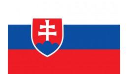 Slovenčina - Slovak language - preklad stránky
