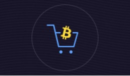 Bitcoin Payment Gateway 1.5V