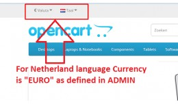 Language based currency change automatically