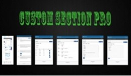 Custom Section Pro