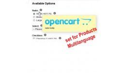 Multilanguage Options Tooltip hint help window v..