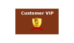 Customer VIP Program