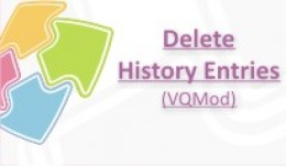 Delete history entries