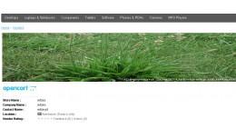 Multi Vendor Homepage Slider