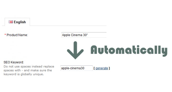 SEO Slug - Automatically - Auto fill SEO keyword for SEO url