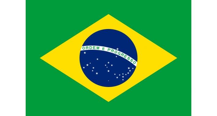 Tradução Português Brasil (Todas Versões)