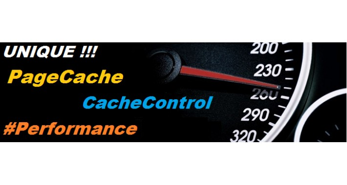 Page Cache PRO: 600x PERFORMANCE + CacheControl + UNIQUE!!