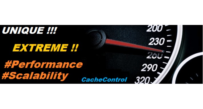UNIQUE!! Extreme Performance - The very best for OC 1.5