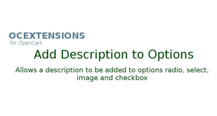 Add description to option