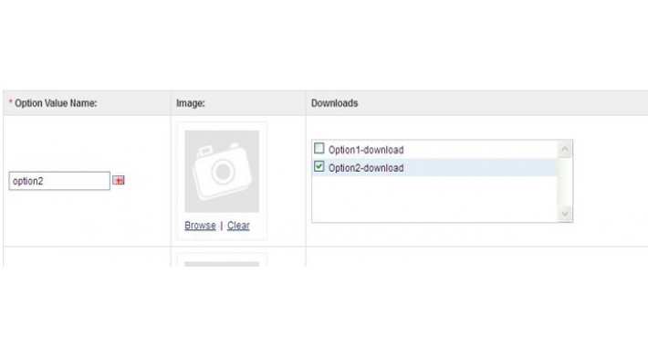 Product Option download