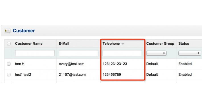 Customer Telephone Search and Sort