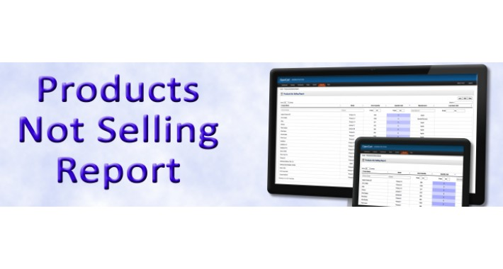 Products Not Selling Report