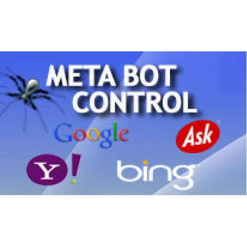 What is the meaning of the meta tag