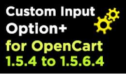 Custom Input Option