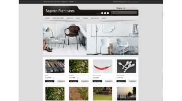 Sagwan Furniture