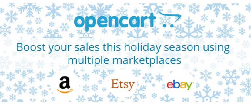 Boost your sales this holiday season using multiple marketplaces