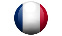 ✔ French Language Pack v2 and v3.+ - 100% Prof..
