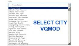 Select City VQMOD